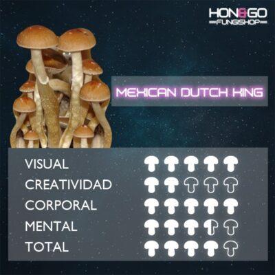 Mexican-dutch-king-mdk
