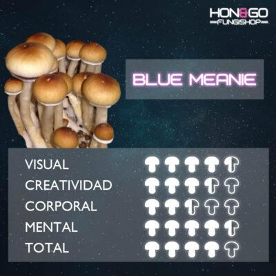 hongo blue meanie potencia